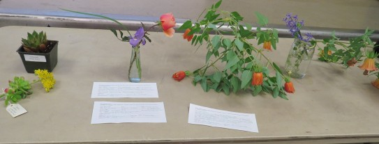 Plant forum offerings