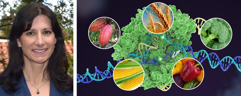 CRISPR Technology: Genome Editing forAgriculture