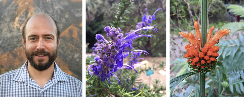 A Tale of Two Floras: Botanical Adventures at Home andAbroad