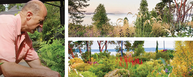 Creating Windcliff: The New Garden, Mistakes and Miracles Found Along theWay