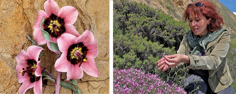 Armenia: Nature andClimate